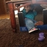 Box-bed under the table equipped with sippy cup, pillow and blanket.
