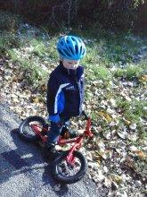Ranger rides his bike on walks now.